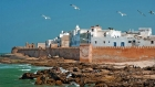 Day Tour to Essaouira from Agadir