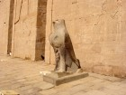Trip to Kom Ombo and Edfu from Aswan
