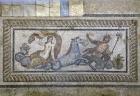 Ephesus , Terrace Houses and Artemis Temple Tour