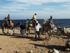 Jeep Safari and Snorkeling in Dahab