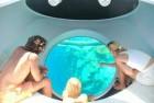 Paseo en Barco con Fondo de Cristal en Sharm