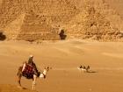Egypt Pyramids, Sharm El Sheikh & Petra
