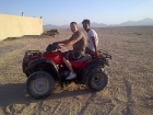 Morning Quad Bike Desert Safari