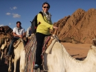 Tour de quadriciclo e passeio de camelo