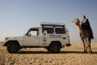 Escursione Jeep Safari Cammellata e Cena Beduina