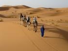 Safari Con 4x4, Quadbike e Cena Beduina