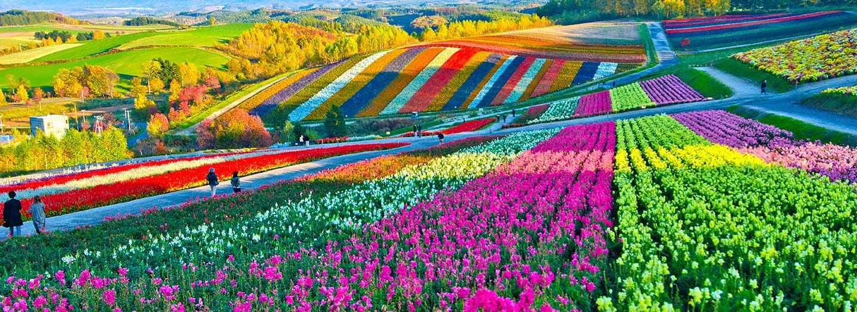 Japan Reise, Japan Rundreise, Rundreise Japan